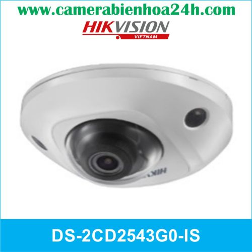 CAMERA HIKVISION DS-2CD2543G0-IS